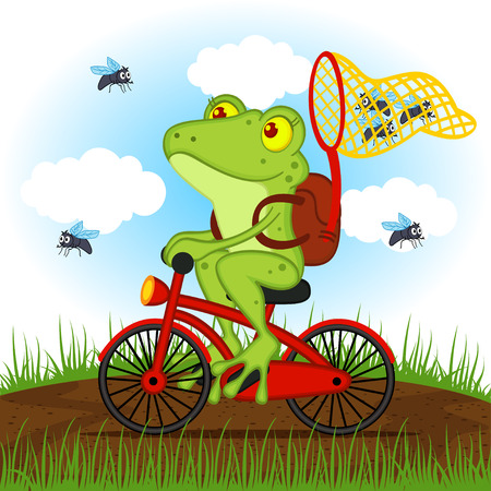 frog: frog on a bike catches flies - vector illustration