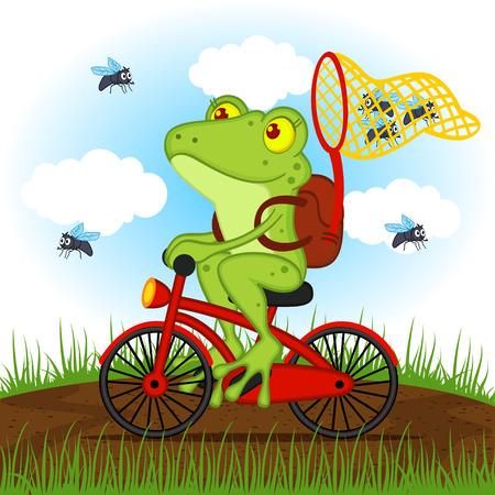 rana: rana en una bicicleta atrapa moscas - ilustraci�n vectorial