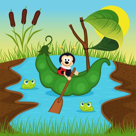 floats: ladybug  floats on peas on river - vector illustration, eps Illustration