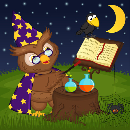 owl wizard - vector illustration, eps Vector