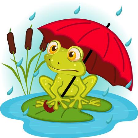 rana caricatura: rana bajo el paraguas - ilustración vectorial, eps Vectores