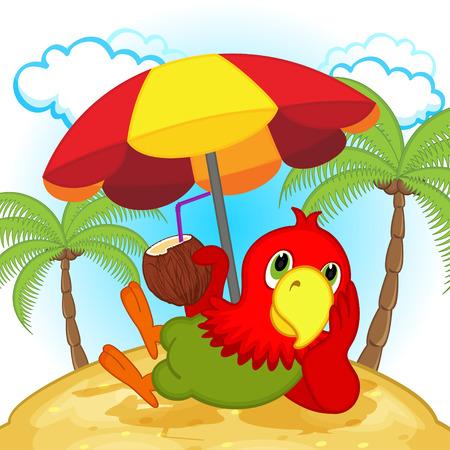 resting: parrot resting on beach - vector illustration, eps