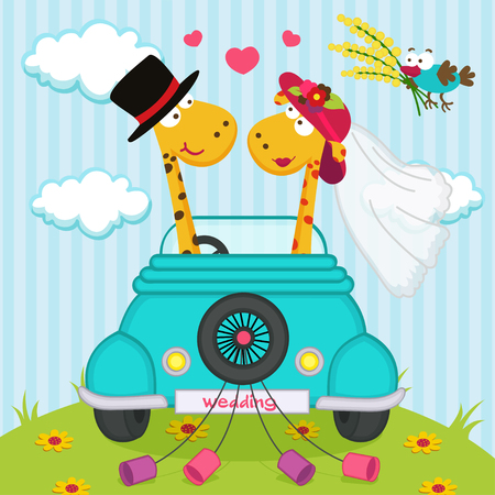 baby giraffe: wedding with giraffes - vector illustration, eps Illustration