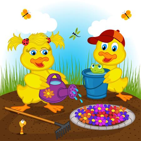 ducks water: ducklings boy and girl watering flowers - vector illustration, eps