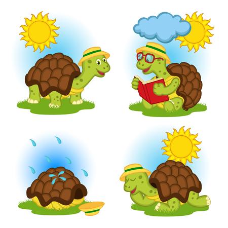 Schildkröte ein Buch zu lesen und versteckt aus dem regen