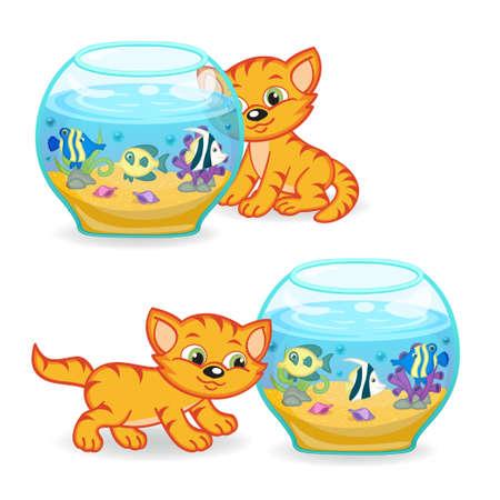 swimming glasses: kitten walking around an aquarium with fishes