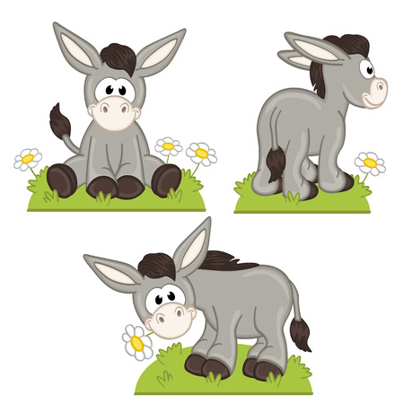 sit: set of isolated donkey in meadow -  illustration, eps Illustration