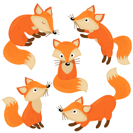 Set of isolated cute foxes part 1 - vector illustration, eps
