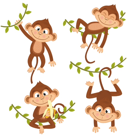 Set of isolated monkey hanging on vine - vector illustration, eps
