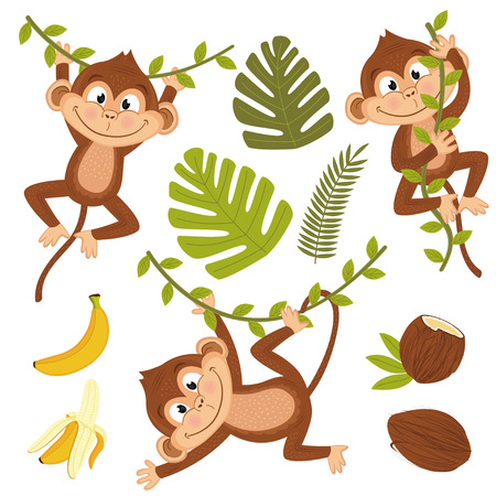 Set of isolated monkey with plants and fruits