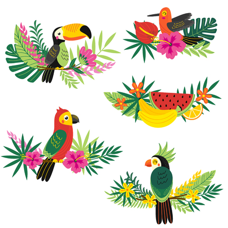Set of isolated tropical design - vector illustration, eps