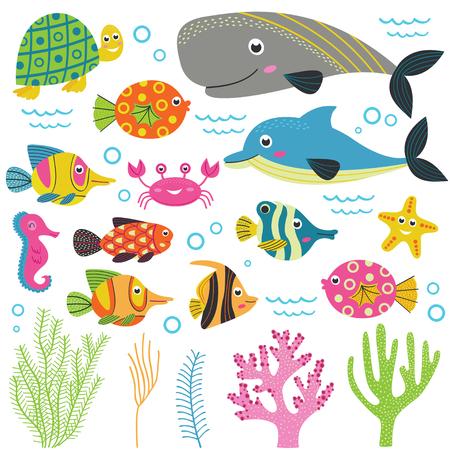 cachalot: Set of isolated with marine animals part 2 - vector illustration, eps Illustration