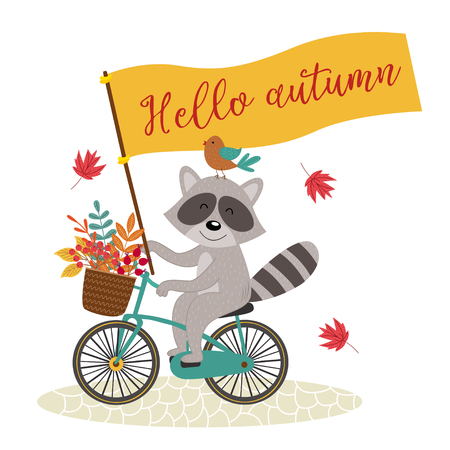 card raccoon rides bicycle with autumn leaves - vector illustration, eps