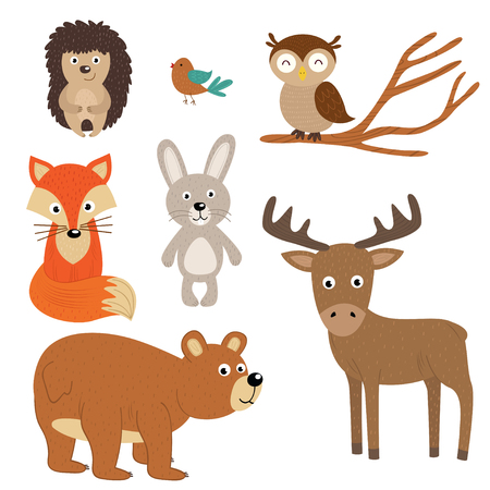 set of isolated forest animals - vector illustration, eps Illustration