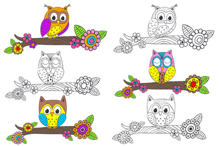 set of isolated funny owl on branch - vector illustration, eps Banque d'images - 96329970