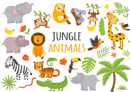set of isolated jungle animals and tropical plants Ilustração