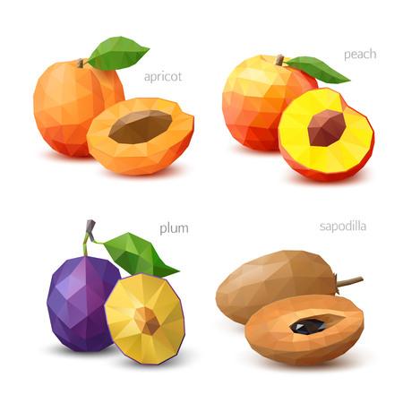 Set of polygonal fruit - apricot, peach, plum, sapodilla. Vector illustration Illustration