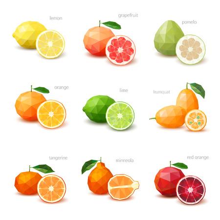 Set di agrumi poligonali - limone, pompelmo, pomelo, arancia, lime, kumquat, mandarino, minneola, arancia rossa. Illustrazione vettoriale