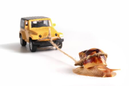 The concept of a sluggish business. The snail Achatina pulls on the trailer car. Banco de Imagens