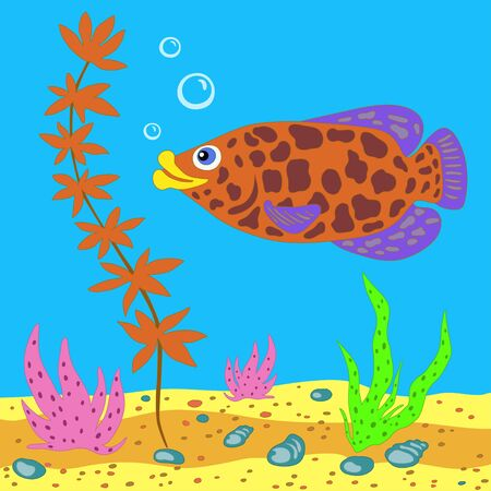 The underwater world with plants, fish, shells - vector background Vector