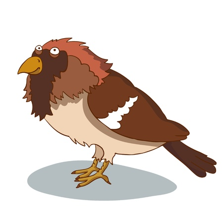 chirp: Cartoon bird on white background - vector Illustration