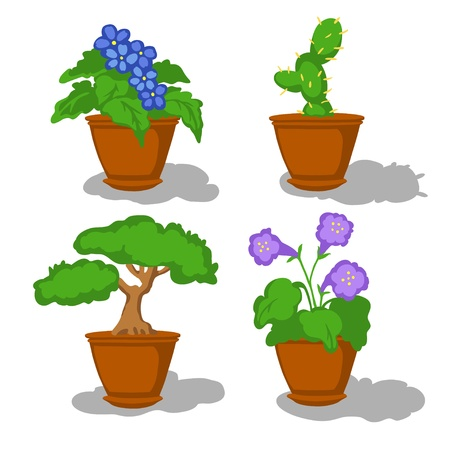 House flowers in pots on a white background - vector Vector