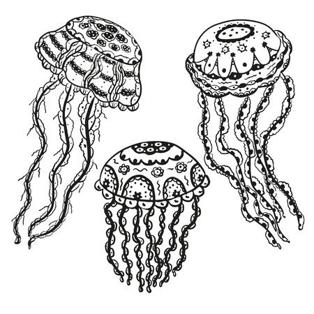 oceanography: Set isolato meduse nero su sfondo bianco-vector Vettoriali