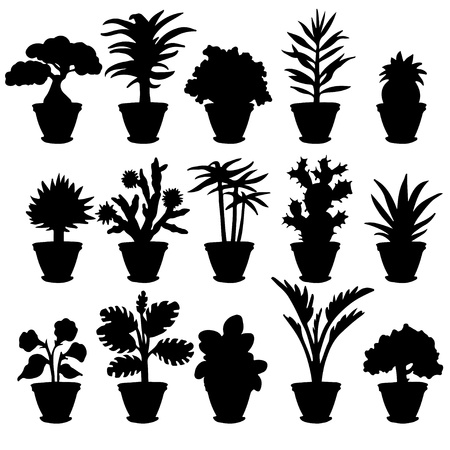 Set black silhouette various houseplants and flowers on a white background  Vector