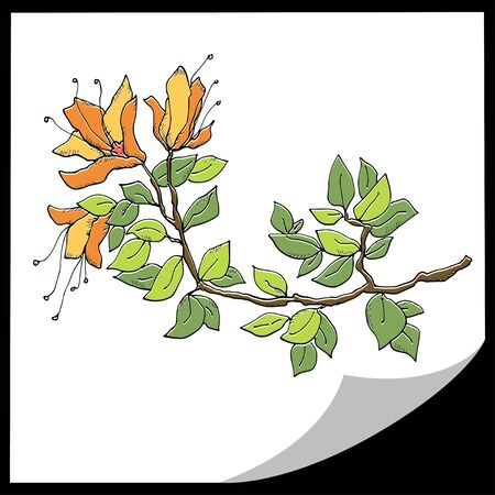 Branch of a tree with flowers - vector Vector