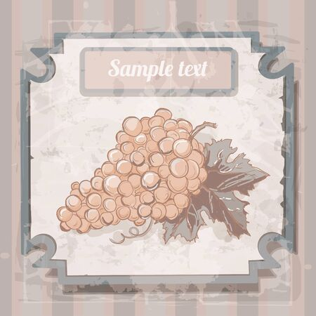 Vintage background with grape - vector Vector
