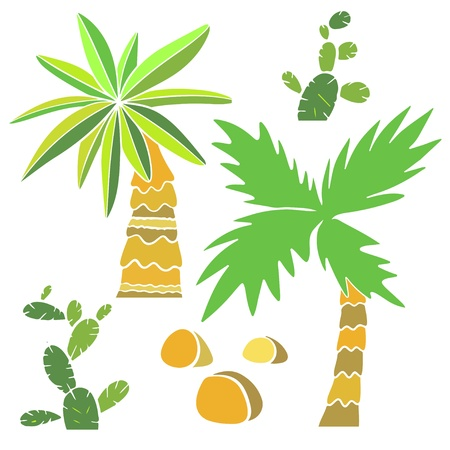Set of isolated sign palm trees, cactus and rocks - vector Vector