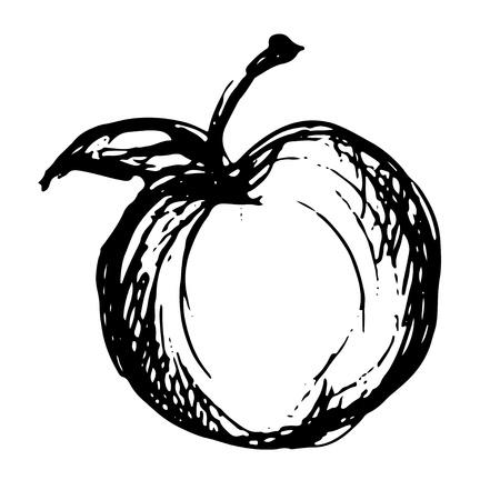 manzana caricatura: Manzana icono de boceto