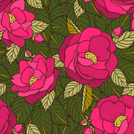 Seamless pattern with wild rose - vector Vector