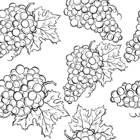 Seamless pattern with grapes in black and white - vector Vector