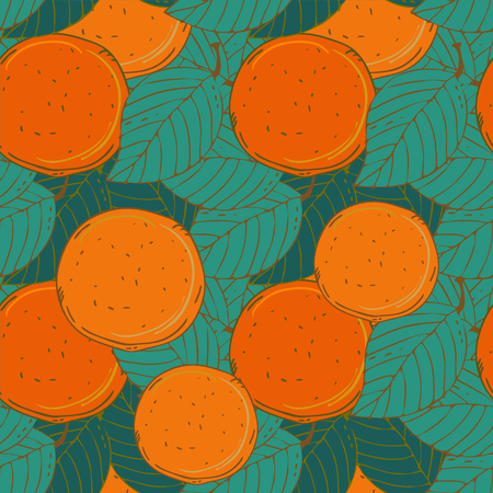 Seamless pattern with oranges - vector  Vector