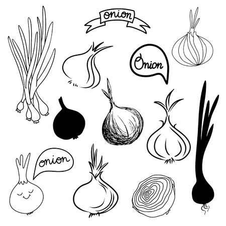 Onions sketch set in black and white - vector