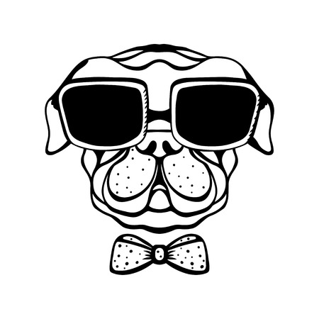 pug puppy: Dog with a bow and glasses isolated in black and white - vector Illustration