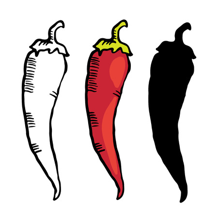 black pepper: Set color simple sketch red hot chili peppers isolated on white background  Vegetables  Food - vector