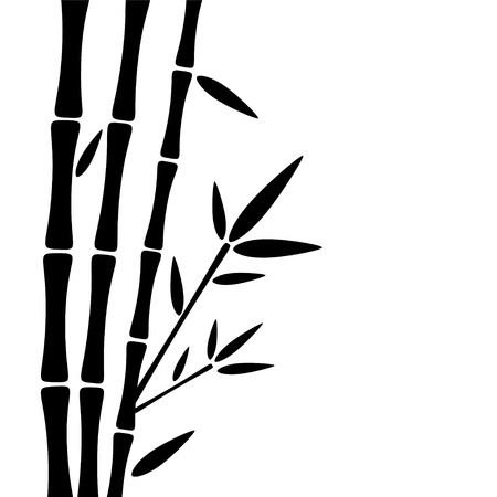 Bamboo trees with leaves black silhouettes isolated on a white background. Forest - vector Illustration