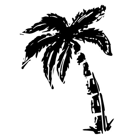 Coconut palm tree black silhouette isolated on a white background hand drawn illustration. Icon, sign. Art logo design