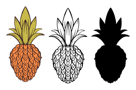 Pineapple cartoon hand drawn set isolated on a white background. Icon, sign.