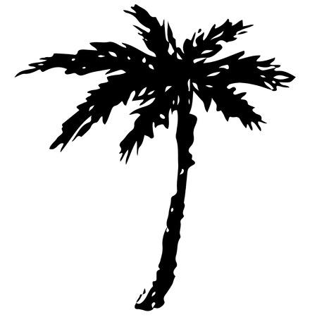 Het zwarte silhouet van de kokosnotenpalm dat op een witte hand getrokken illustratie wordt geïsoleerd als achtergrond. Pictogram, teken Art logo ontwerp Logo