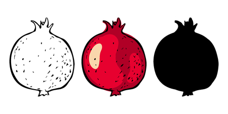 Pomegranate fruit, color, line art, black silhouette set isolated on white background