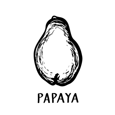 Papaya fruit closeup black hand drawn icon isolated on a white background Illustration