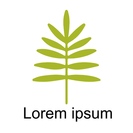 Icône de gros plan de feuille de palmier isolé sur fond blanc, création de logo d'art Logo