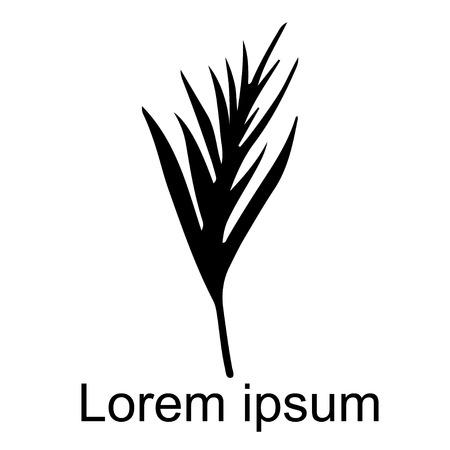 Palm leaf closeup icon isolated on white background, art logo design