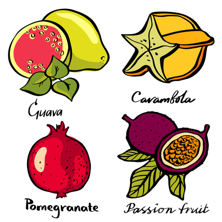 Tropical fruits cartoon set closeup isolated on white background. Guava, carambola, pomegranate, passion fruit