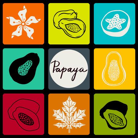 Papaya fruits, flower, leaf