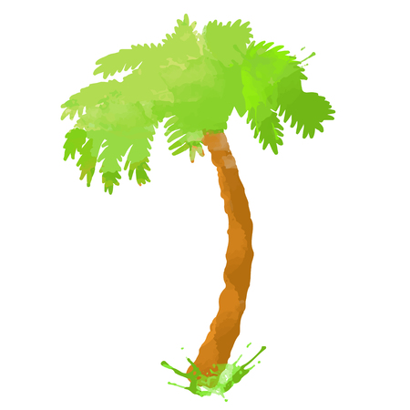 Watercolor coconut palm tree with splash closeup isolated on white background Banque d'images - 122799932