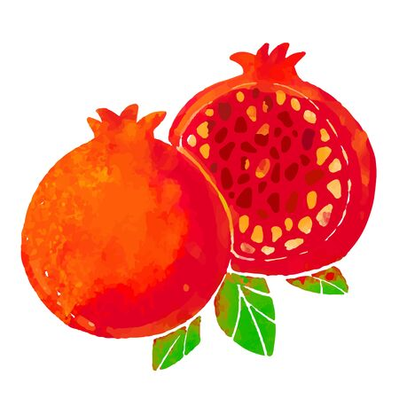 pomegranate fruit and leaves closeup isolated on a white background